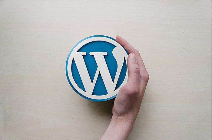 ジンドゥー WordPress